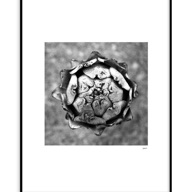 Kronärtsskocka #1 (30x40 cm) - Studio Caro-lines