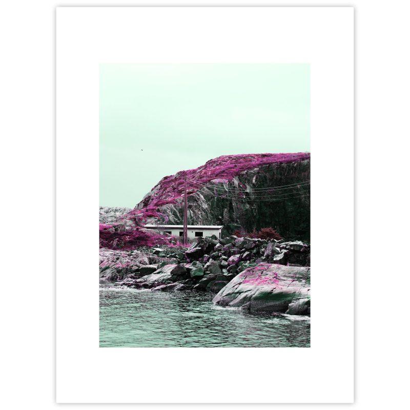 Pink ocean - Studio Caro-lines