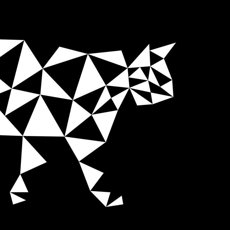 Grafisk katt (svart) - Studio Caro-lines