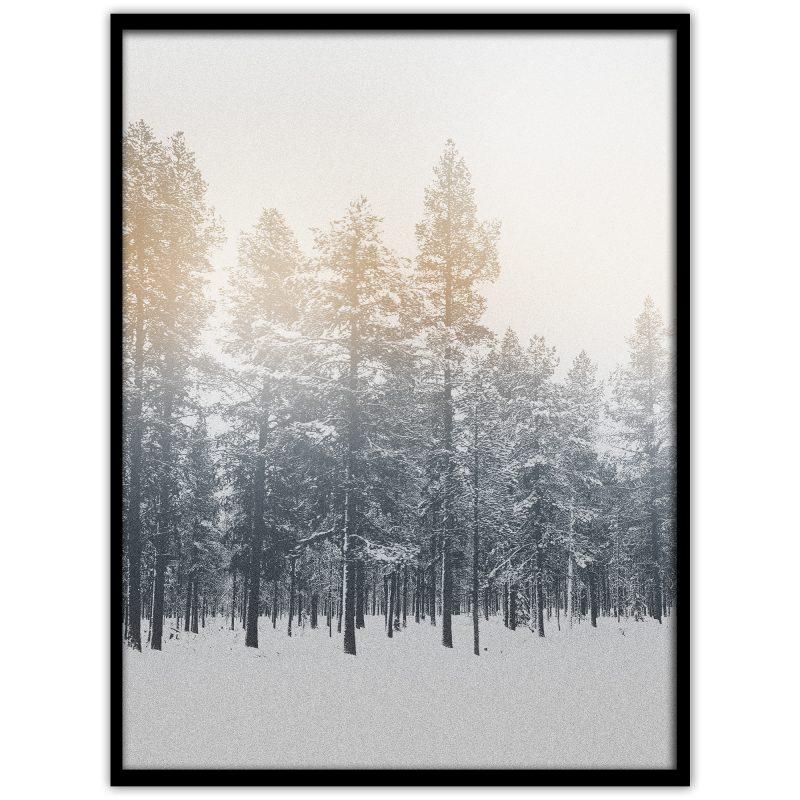 Granar i skogen i Norrland