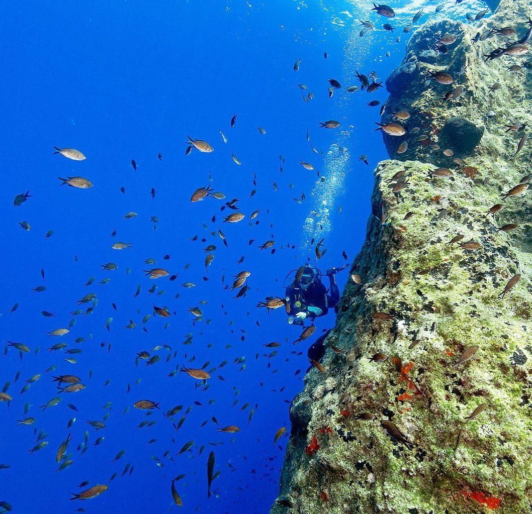 Amorgos Diving Center