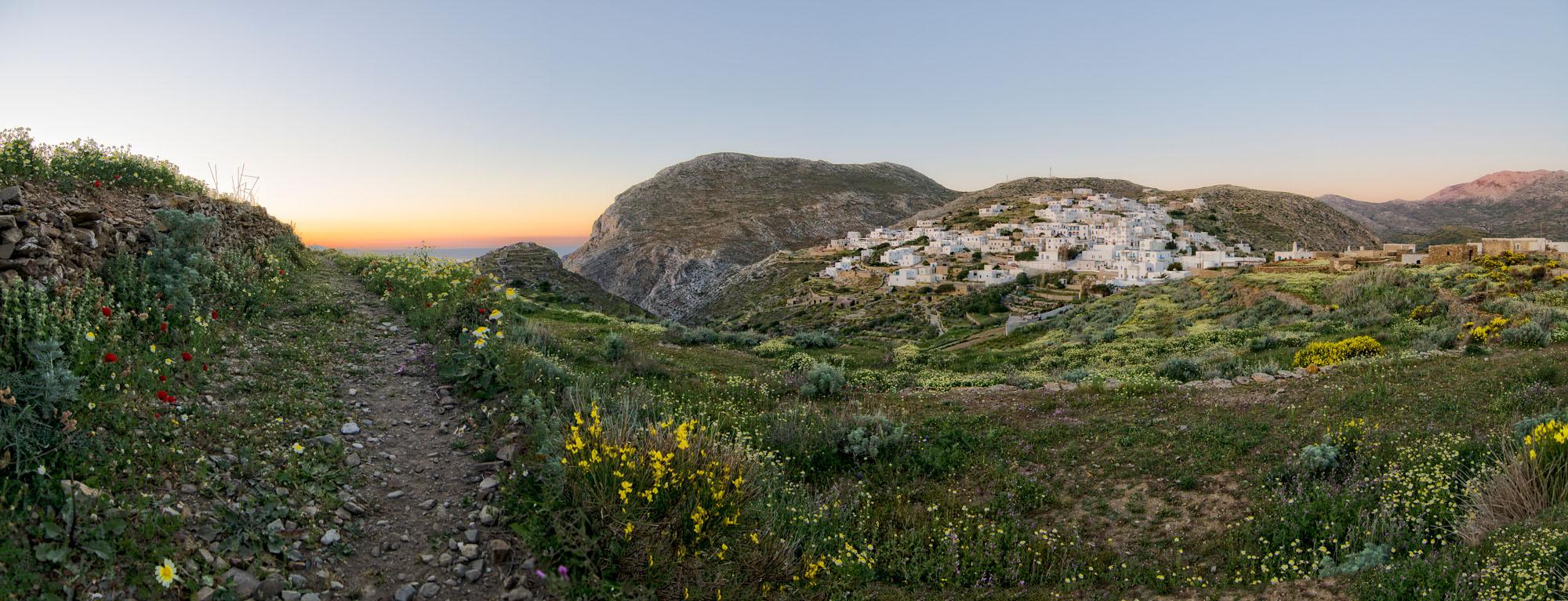 The Village of Tholaria