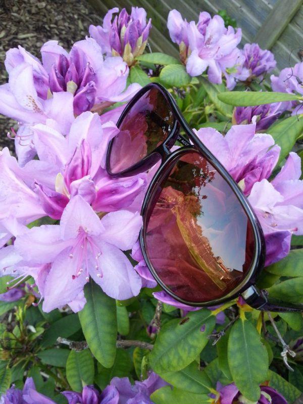 Brune solbriller 2