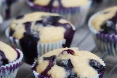 Whole wheat blueberry and coconut muffins