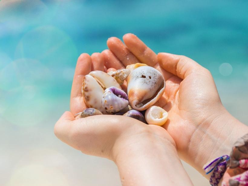 Seashells at Secret Beach Nusa Ceningan