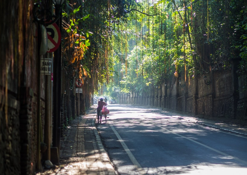 The mysterious streets of Ubud Bali - A first timer's guide