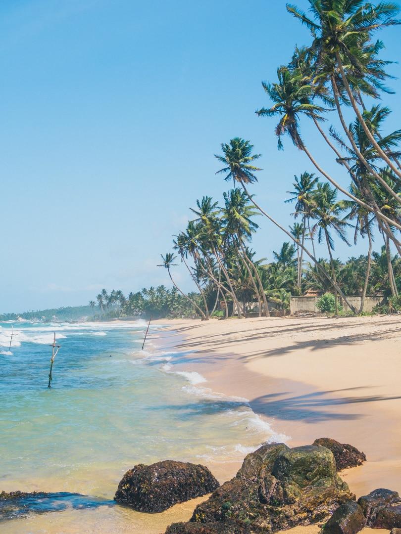 Dalawella beach right next to Unawatuna, Sri Lanka - Palm Tree Swing