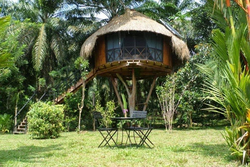 7 best and affordable Sri Lanka Airbnbs - Hikkaduwa