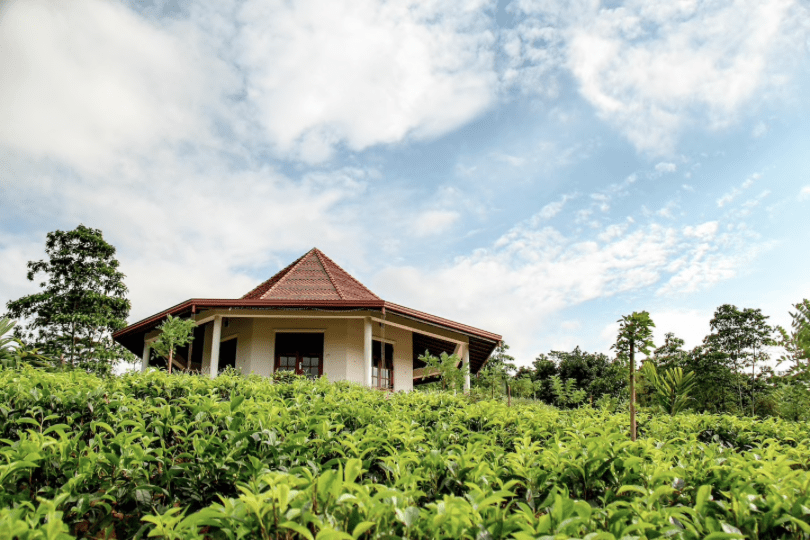 7 best and affordable Airbnbs in Sri Lanka - Kandy