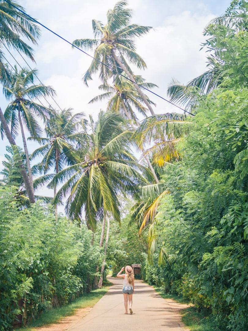 Tangalle beach, Sri Lanka - One of the most beautiful beaches on the island