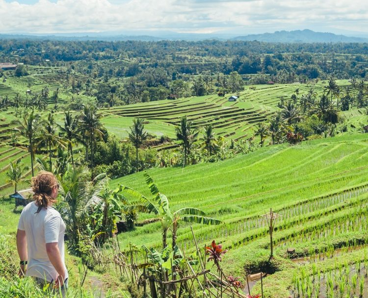 Jatiluwih Rice Terraces & Yeh Hoo Waterfall – Bali