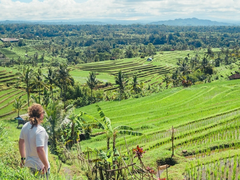 Jatiluwih Rice Fields & Yeh Hoo Waterfall, Bali, Indonesia