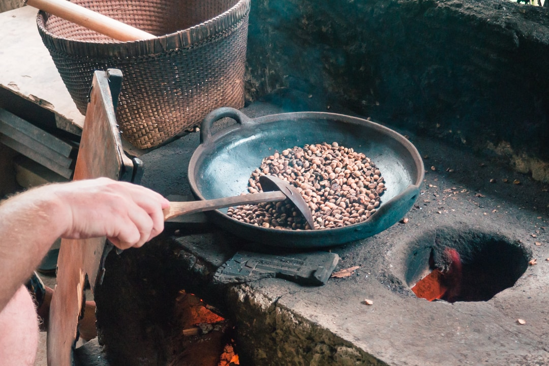 A review of Jegeg Bike Tour in Ubud - The best Bali experience - Kintamani Coffee plantation
