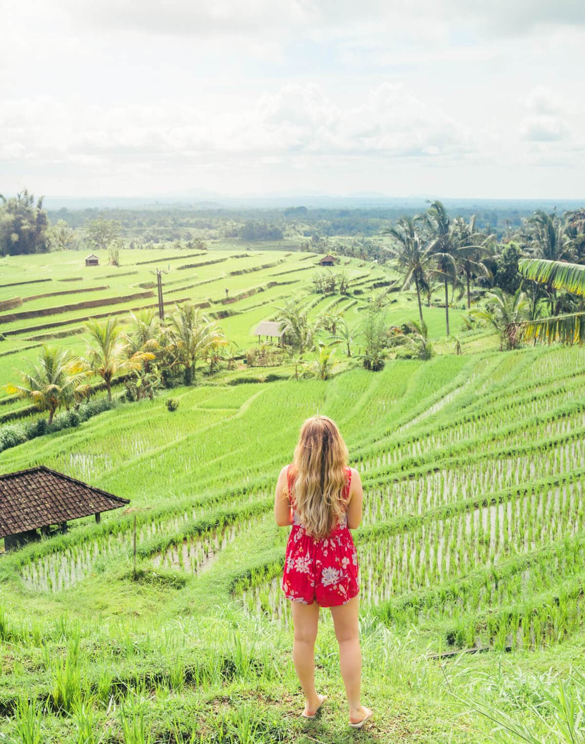 Jatiluwih Rice Terraces View - The ultimate Bali Bucket List 2018