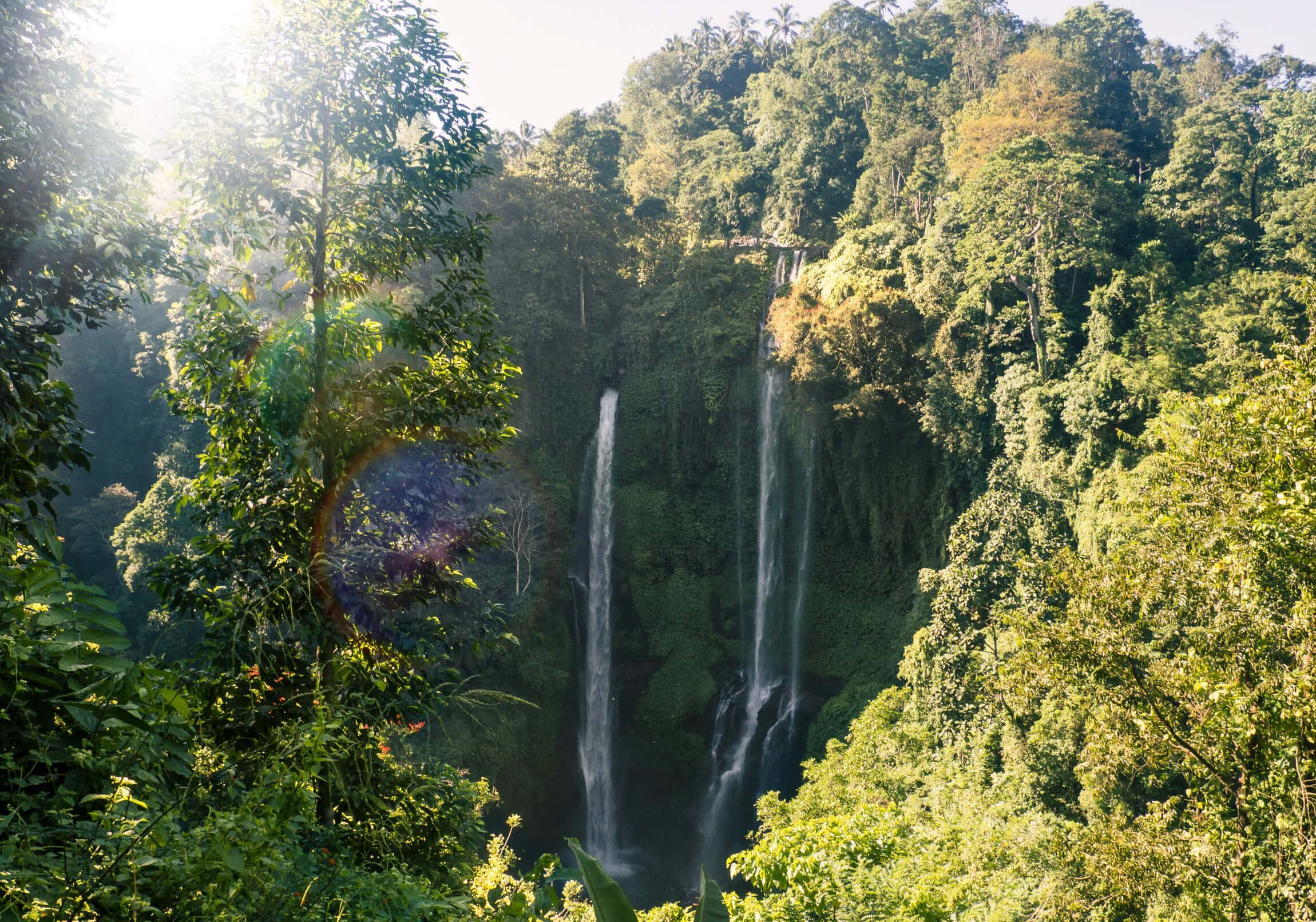 Air Terjun Sekumpul - The most beautiful waterfall in Bali. Book a tour guide or drive there by yourself - Here's how!