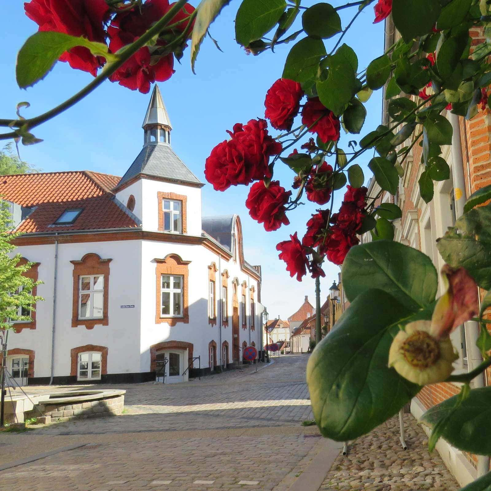 3 awesome day trips from Aarhus - Viborg guide