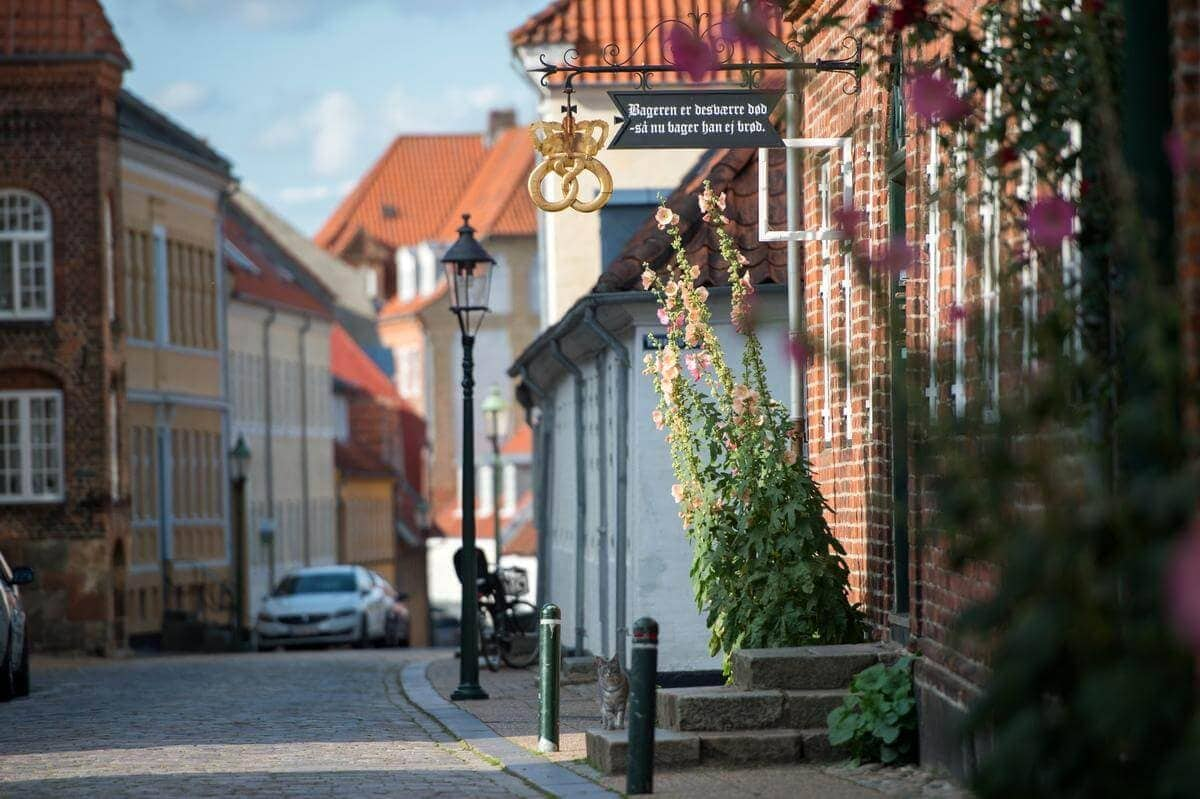 3 awesome day trips from Aarhus - One day in Viborg