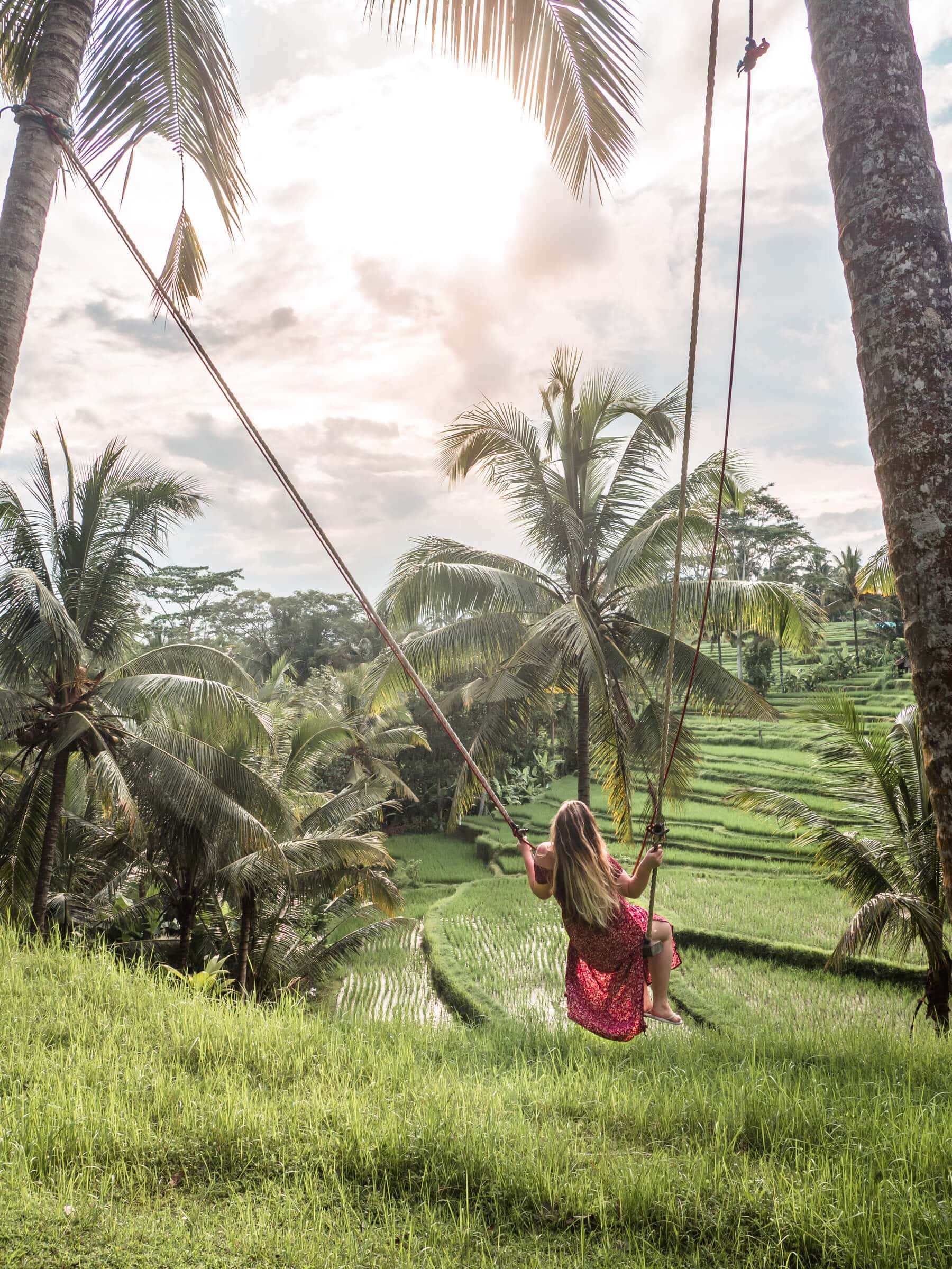 Island Life #4 - Swing in our garden overlooking the rice fields in Ubud
