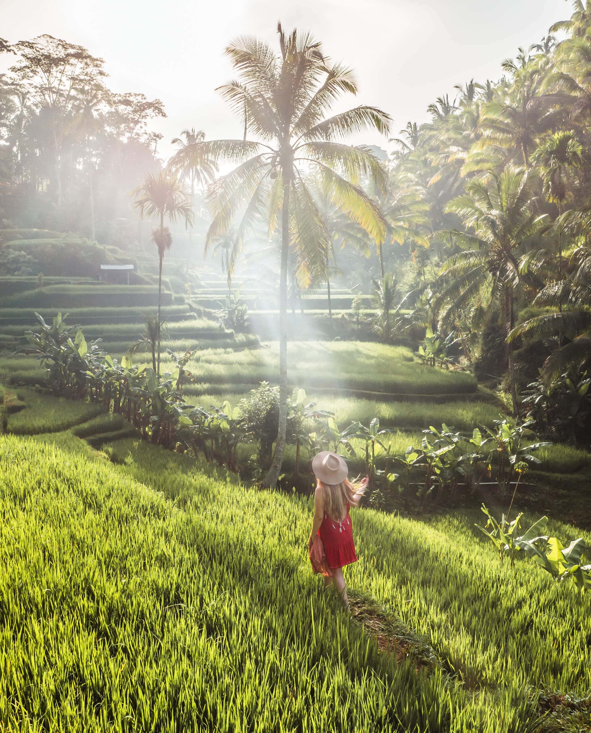 Walking through the rice fields in Tegalalang Rice Terrace Ubud - The popular Instagram sunrise photo spot