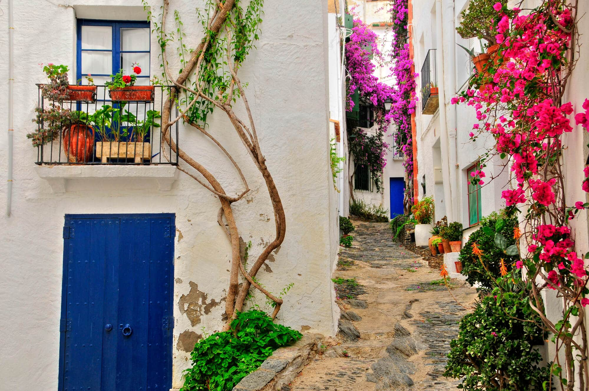 A narrow cobbled street between white houses with blue doors, covered in pink and purple flowers in Cadaqués - The Ultimate Spain Bucket List