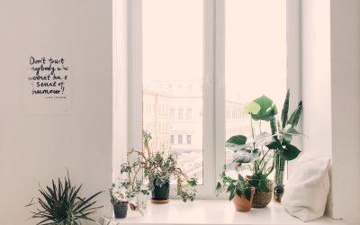 Hvad går det egentlig ud på?: Misforståelser om minimalisme