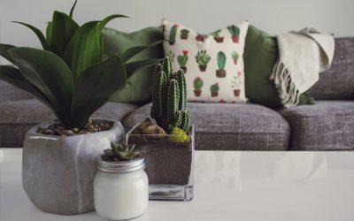 Boligindretning: Sådan indretter du bedst dit hjem