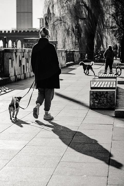 Gåtur med hunden