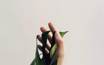 Nyd hinanden til det fuldeste på minimalistisk maner