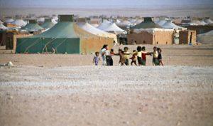 Svenska riksdagsledamöter studerar Västsahara