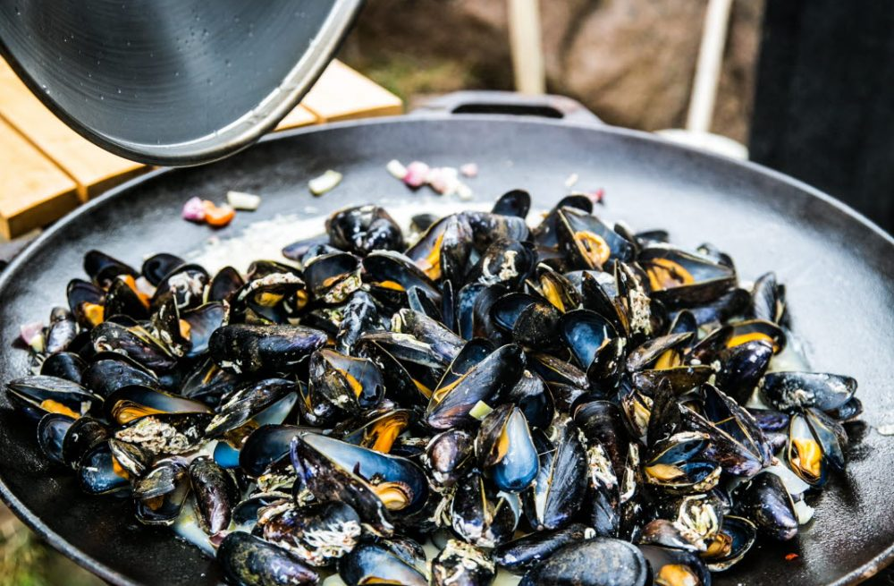 Cooked mussels- Photo Cred Madeleine Landley