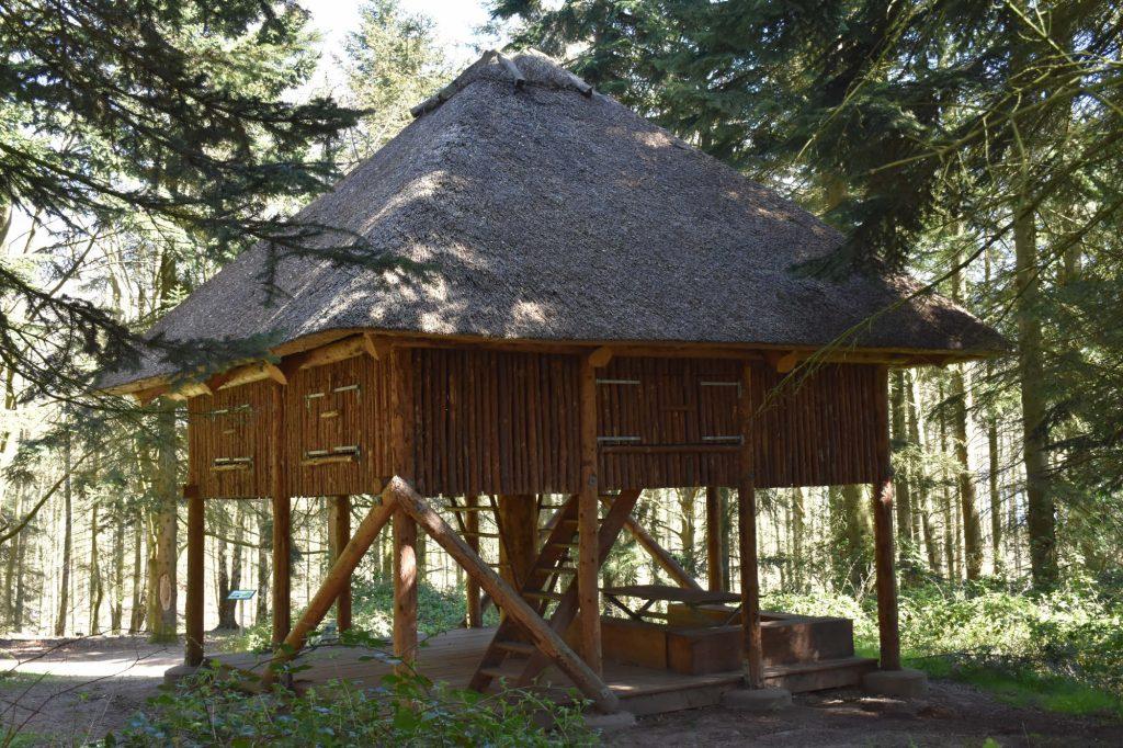 Shelter i Dyreborg Skov