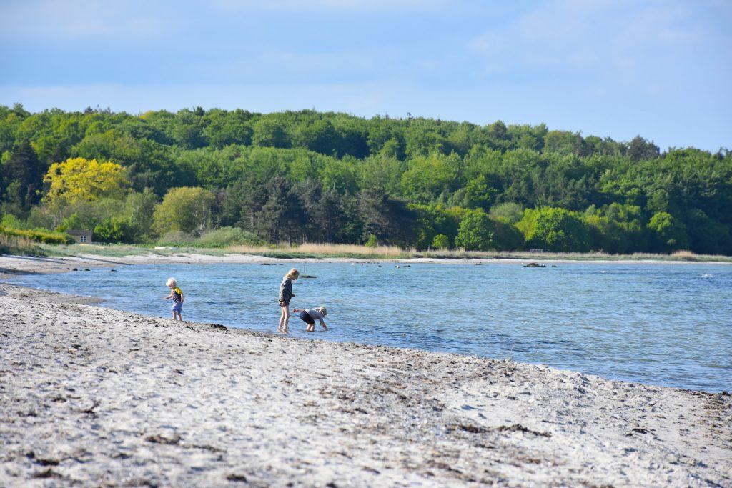Børnevenlig strand i Lundeborg