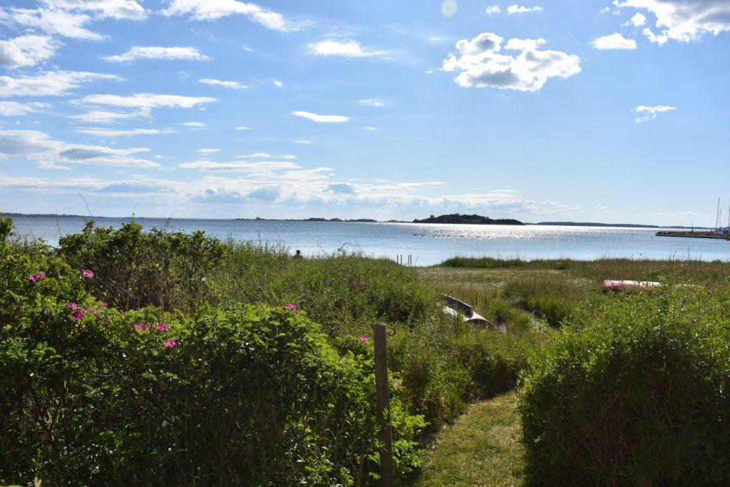 Lige bag Vandkanten ligger Falsled Kro, og dér hvor kroens store have grænser ned mod stranden, går der en lille sti ind.