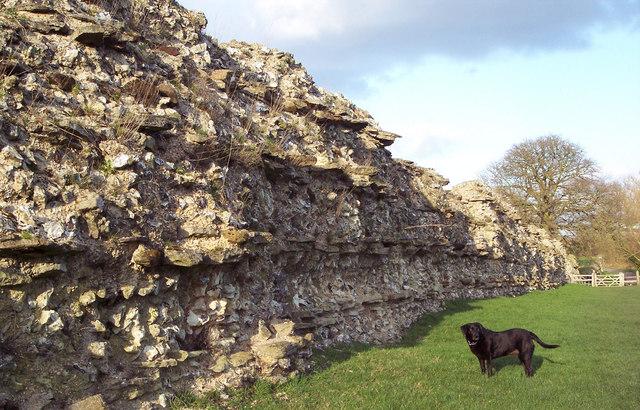 Roman_Wall_at_Calleva_Atrebatum_-_geograph.org.uk_-_334373