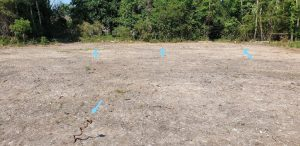 Marked metal stakes