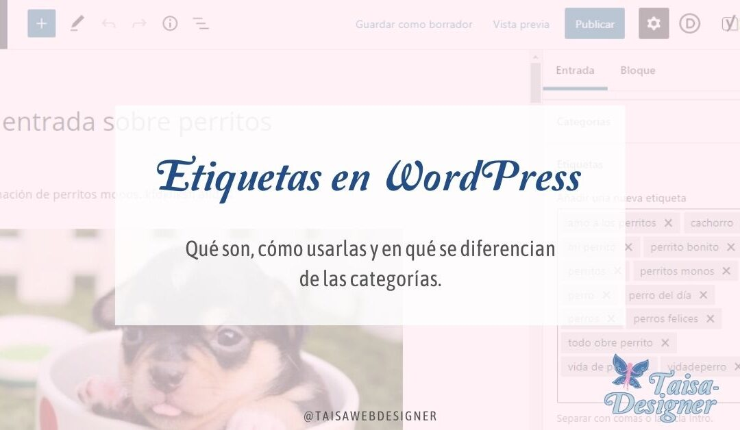 Etiquetas en WordPress Qué son, cómo usarlas y en qué se diferencian las etiquetas de las categorías.