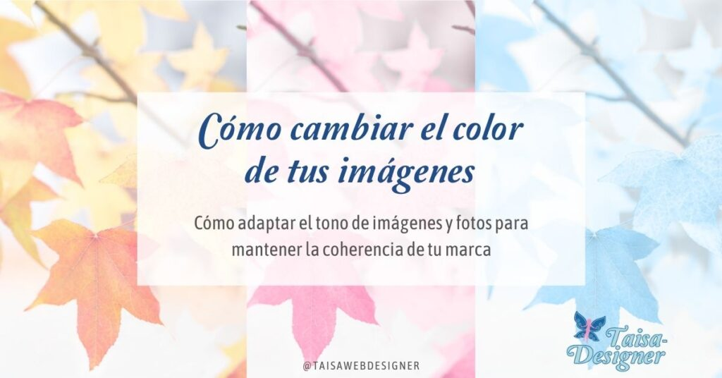 Cómo cambiar el color a una imagen - Cómo cambiar el tono de una foto o imagen para que se adapte a los colores de tu marca, de tu web o tu feed de instagram