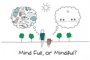 Mindful @ Work (OVB)