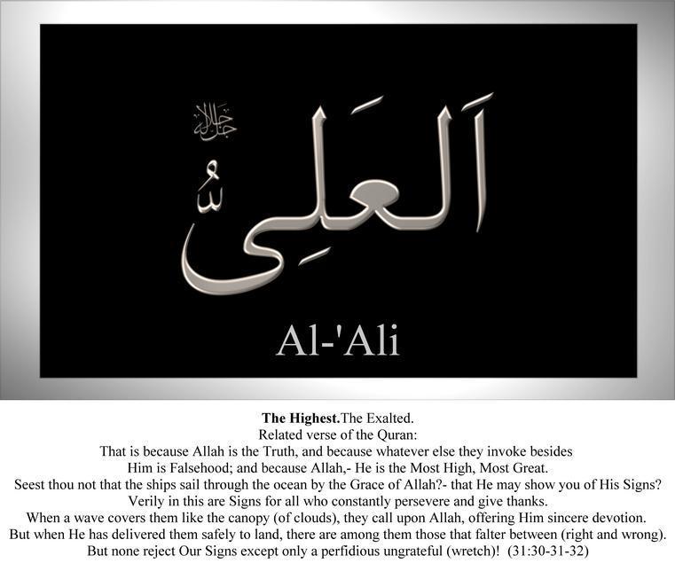 036-al-ali