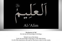 019-al-alim