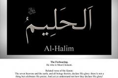 032-al-halim
