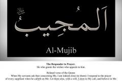 044-al-mujib