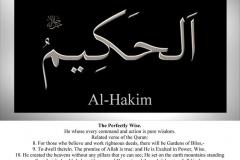 046-al-hakim