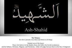 050-ash-shahid