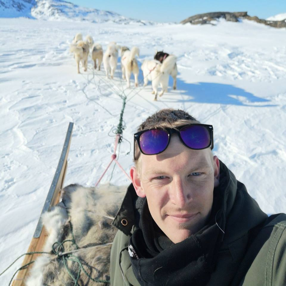 View from a dogsled