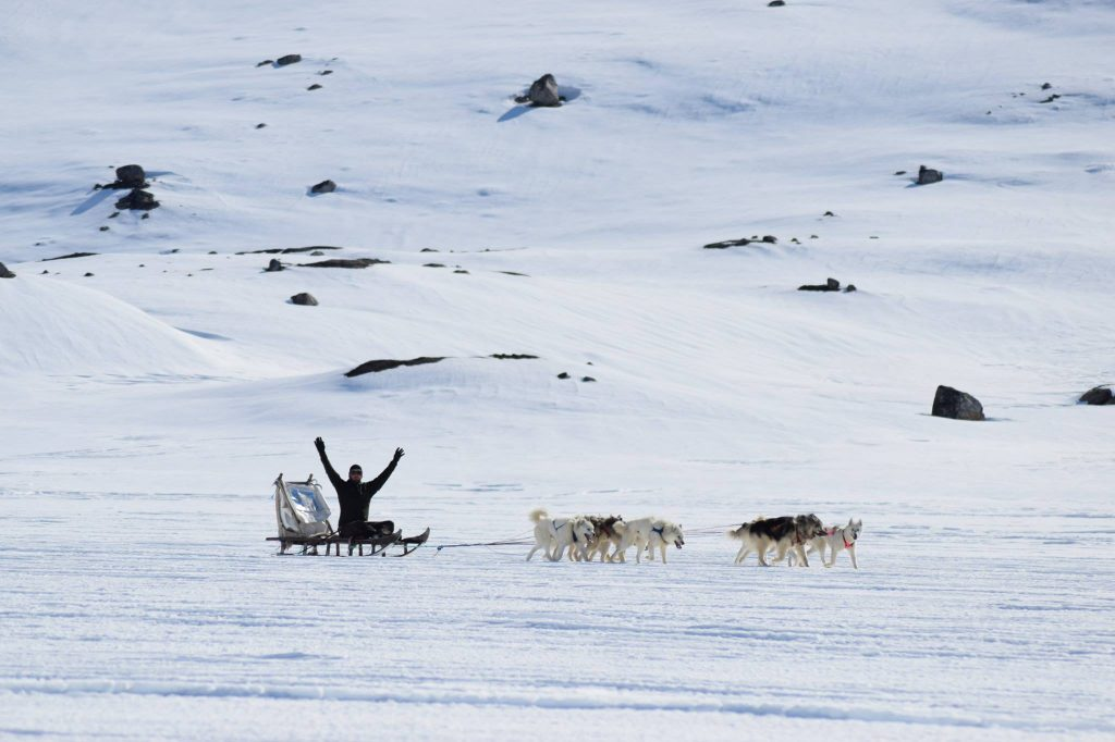 Dog sledding near Tasiilaq