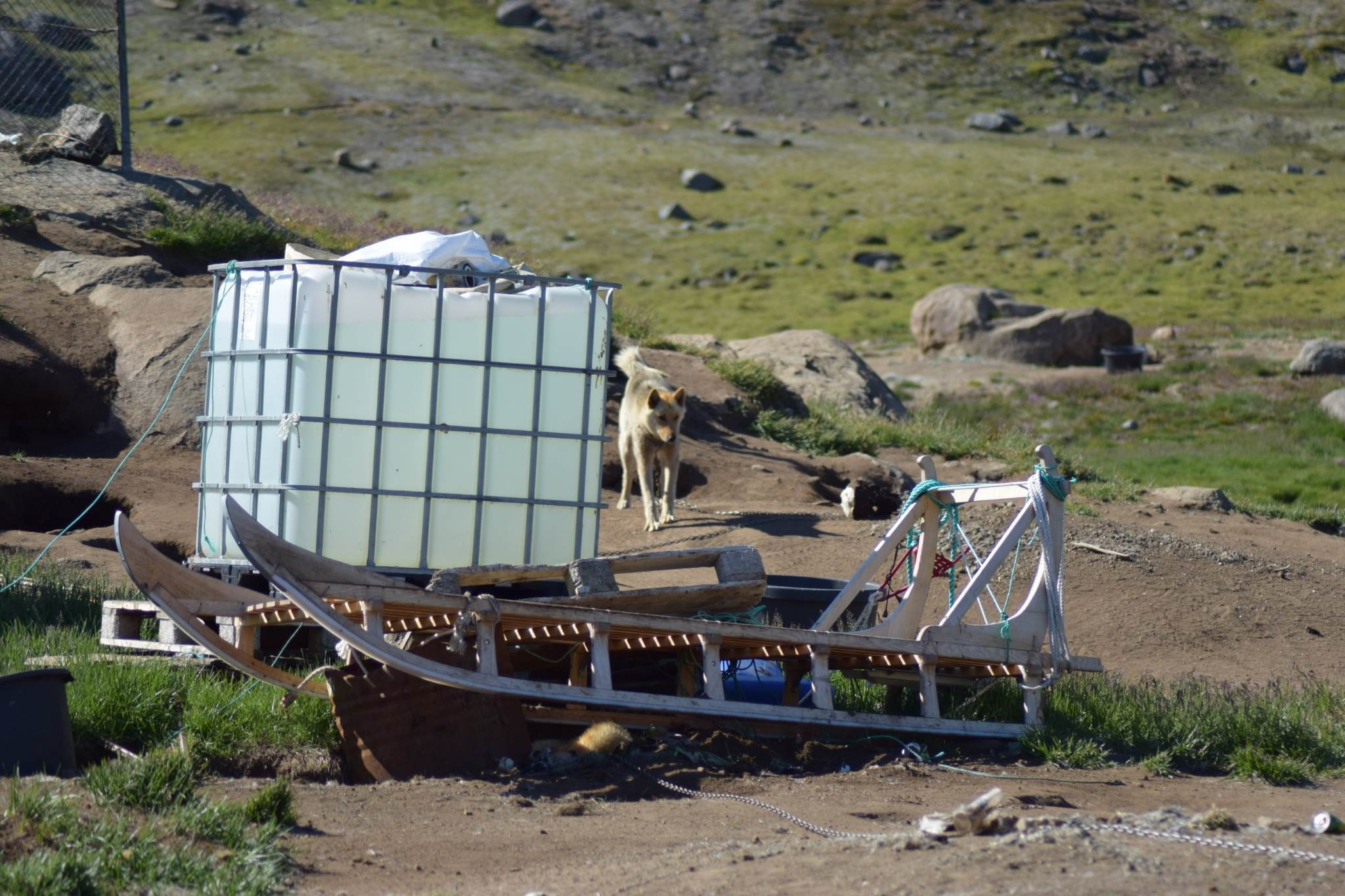 Dogsled parked for the summer