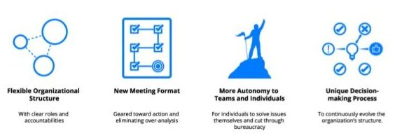 Basics of Holacracy
