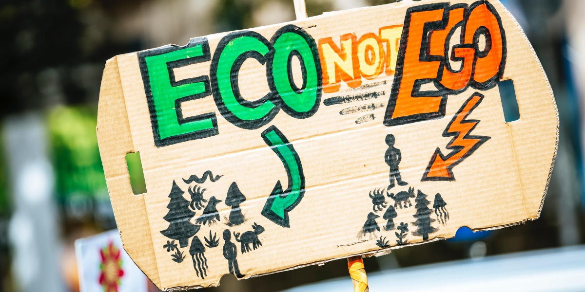 From ego to eco system thinking