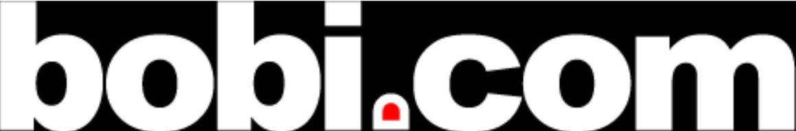bobi_logo_techat